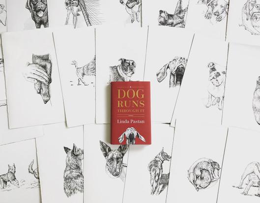 """A Dog Runs Through It"" Illustrations"