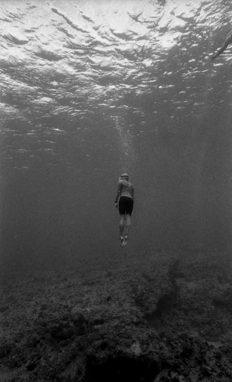 """""""open water swimmer"""""""