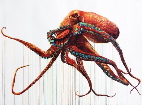 Great Octopus
