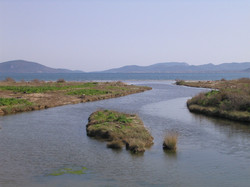 Mytilini (Greece) 17-20 March 04 009.jpg