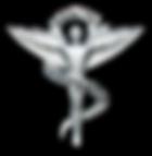 Temecula Chiropractor