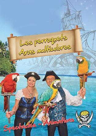 Christopher perroquets.jpg