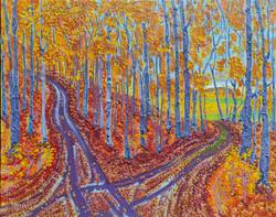 Autumn Forest Crossroads
