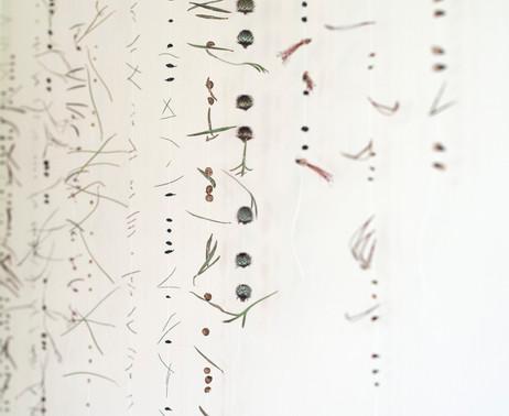 Morse Code (detail)