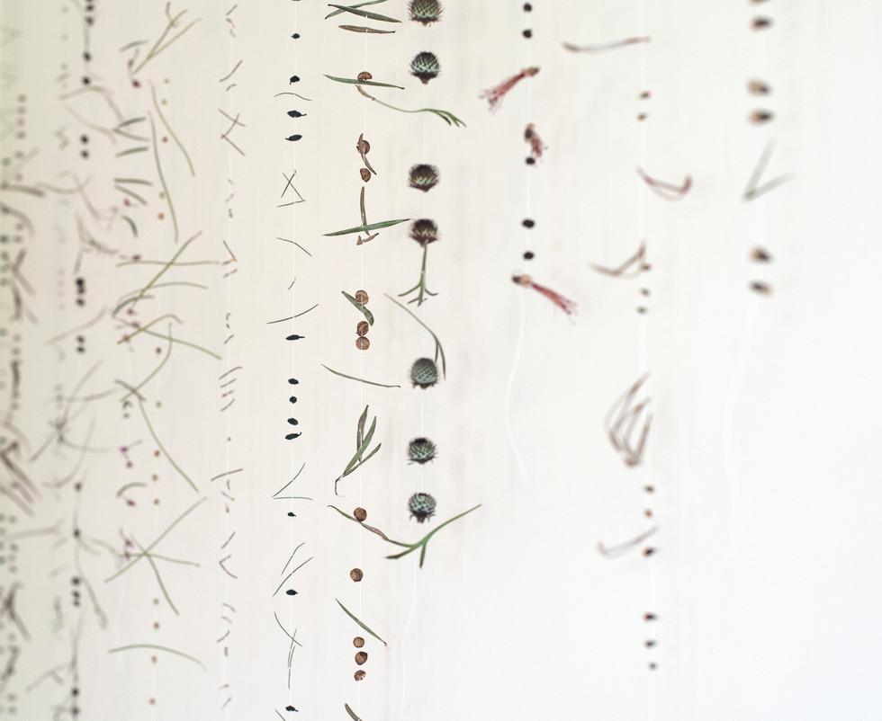 Morse code, 2016 (detai