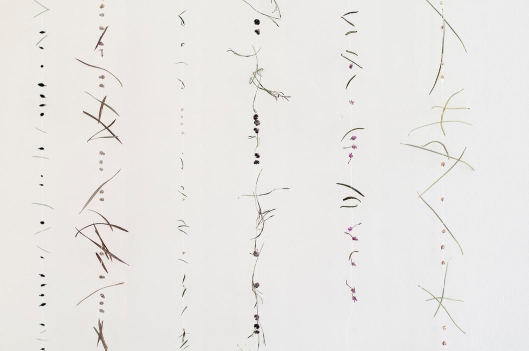 Morse code, 2016 (detail)