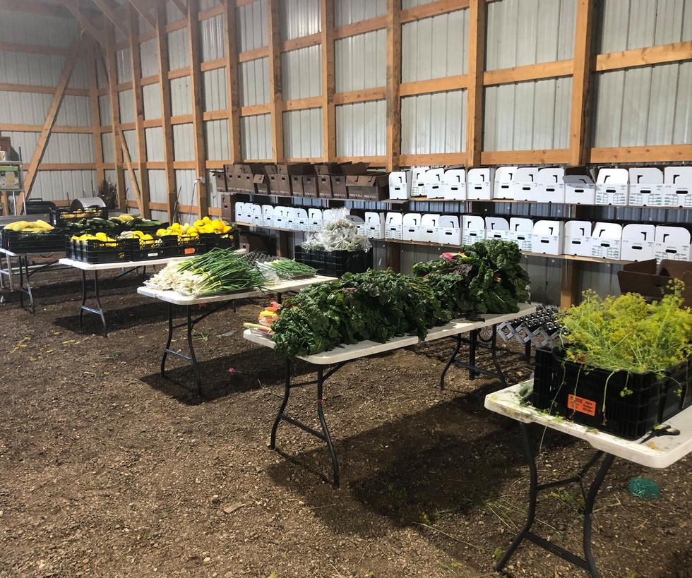 Farm in the Dell