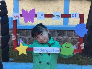 Kindergarten Weekly Insight