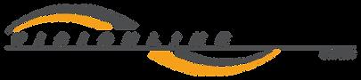 VisionLine Logo Color-01.png
