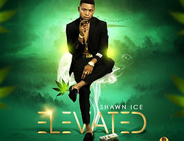 Shawn Ice Elevated Pic Art.jpg