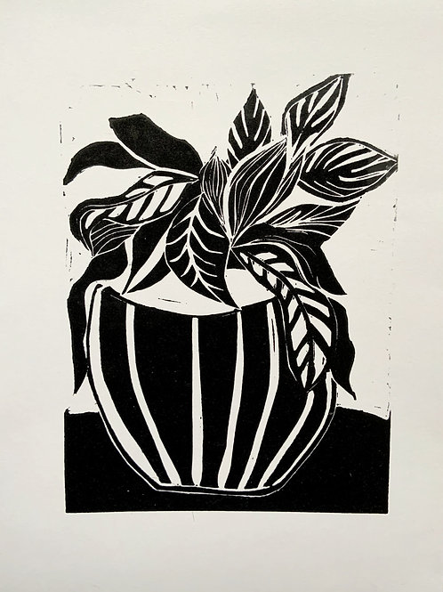 'Plant' Limited Edition Linocut on Paper