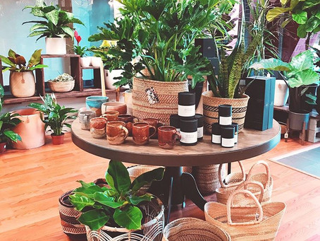 Client Spotlight: Botanic and Luxe