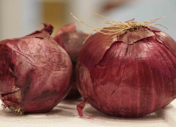 Cipolla di Tropea (100 g)