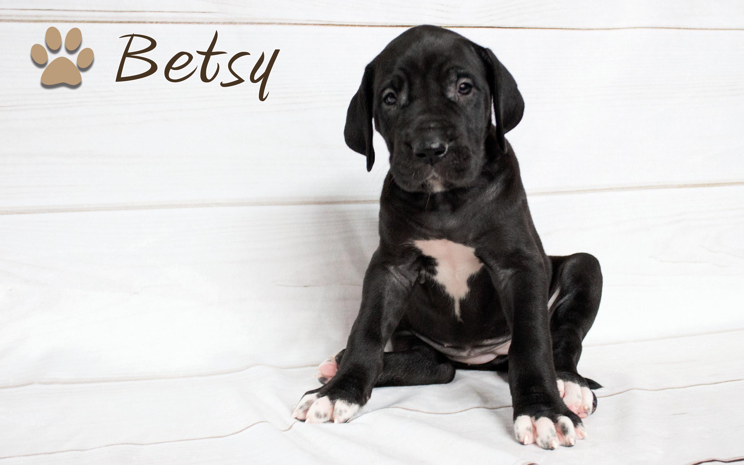 Betsy4