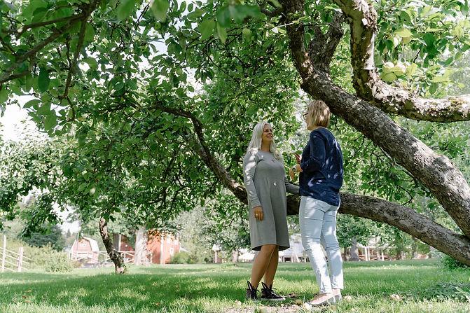 omenapuun alla(1).jpg