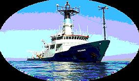 Dynesic Marine Grade Coatings and Sealants