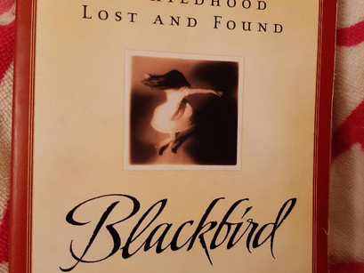 Blackbird: A Look Inside