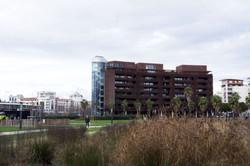 Bassin Jacques Coeur - 24 novembre 2