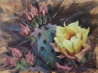 Olgas Cactus.jpg