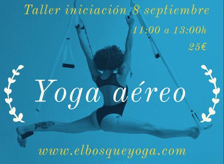 Yoga Aéreo. Taller de iniciación.