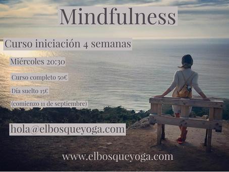 Mindfulness. Curso iniciación
