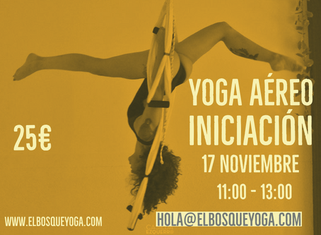 Yoga Aéreo Iniciación
