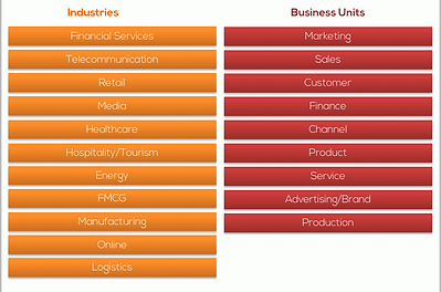 Major Industries and Business Units contributing to the study including marketing sales finance product service production departments in logistics finance telecommunication retail healthcare energy sectors