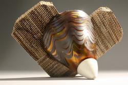 Pseudo-vessel | 2011