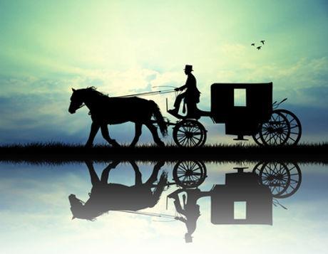 cheval.cochet.caleche.jpg