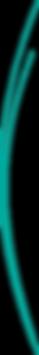 double filet vert@4x.png