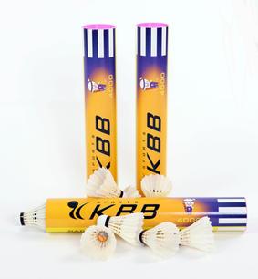 KBB4000.JPG