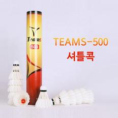 TEAMS 500.jpg