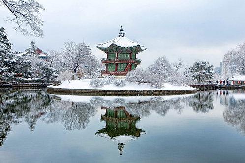 KOREA (Winter + Ski resort) 6D 4N