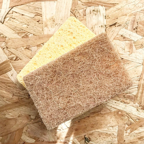 Kitchen sponge pack of two