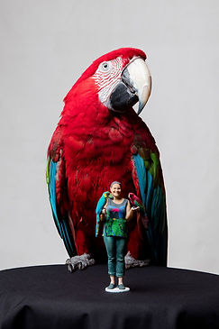 Bird+lady.jpg