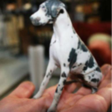 3D Pet Prints-People & Pets in 3D