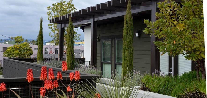 Landscape Design-Los Angeles