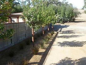 Santa Ynez Landscape Designs