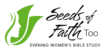 Seeds of Faith Too logo_web.png