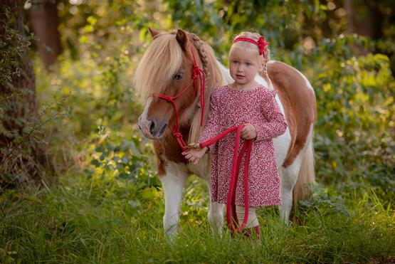 """Little """"Miss P."""" und ihr Pony"""