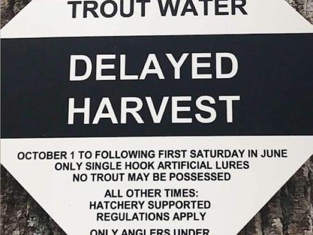 Latest Delayed Harvest Trip