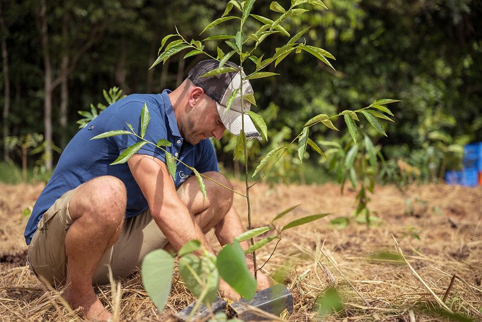 20210501-Rainforest Rescue Community Tre