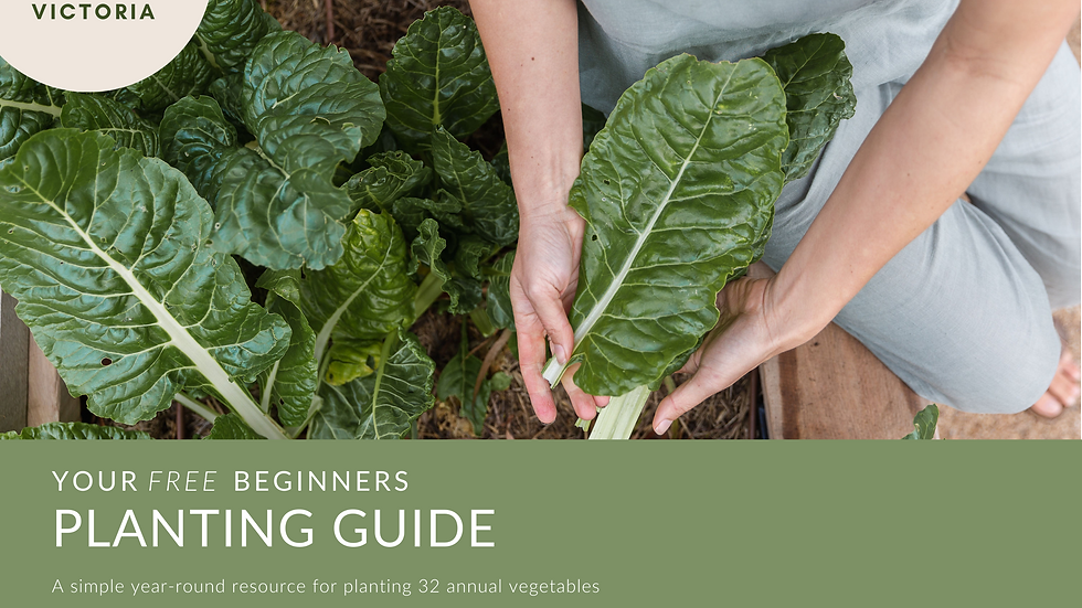 FREE Planting Guide for Beginners - Southern VIC