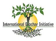 IBI color logo.jpg