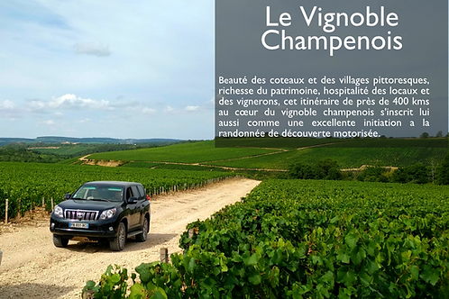 Guide n°6 : Le Vignoble Champenois