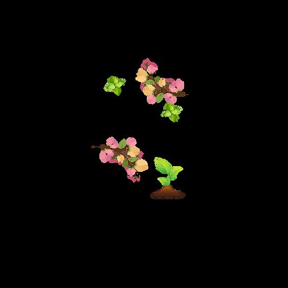 Earth Medicine Logo (4).png