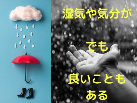 雨・気圧変動でなんで痛くなったり気分が変わったりするの?