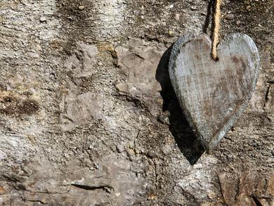 האם אהבה היא התפתחות?