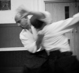 Aikido throws, locks and pins