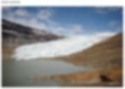 Capture d'écran 2019-01-08 à 03.32.38.pn